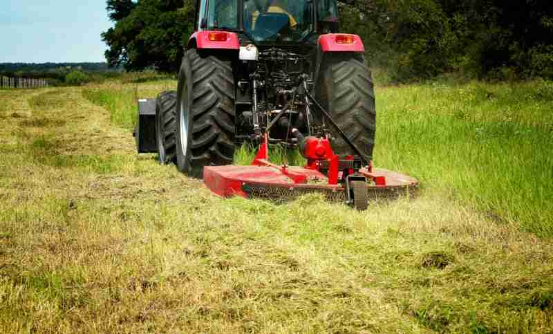 Other Services - Brush Hogging & Land Clearing